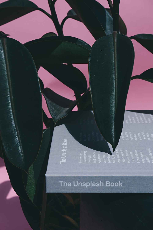 green leaf plant beside the Unsplash boo k