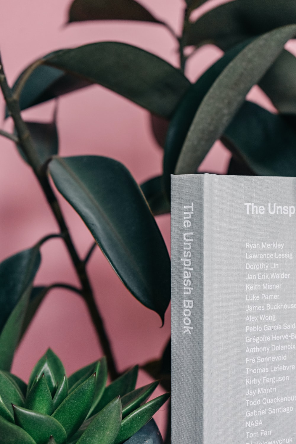 The Unsplash Book selective focus photography