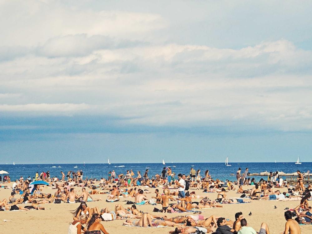 people on brown sand beach