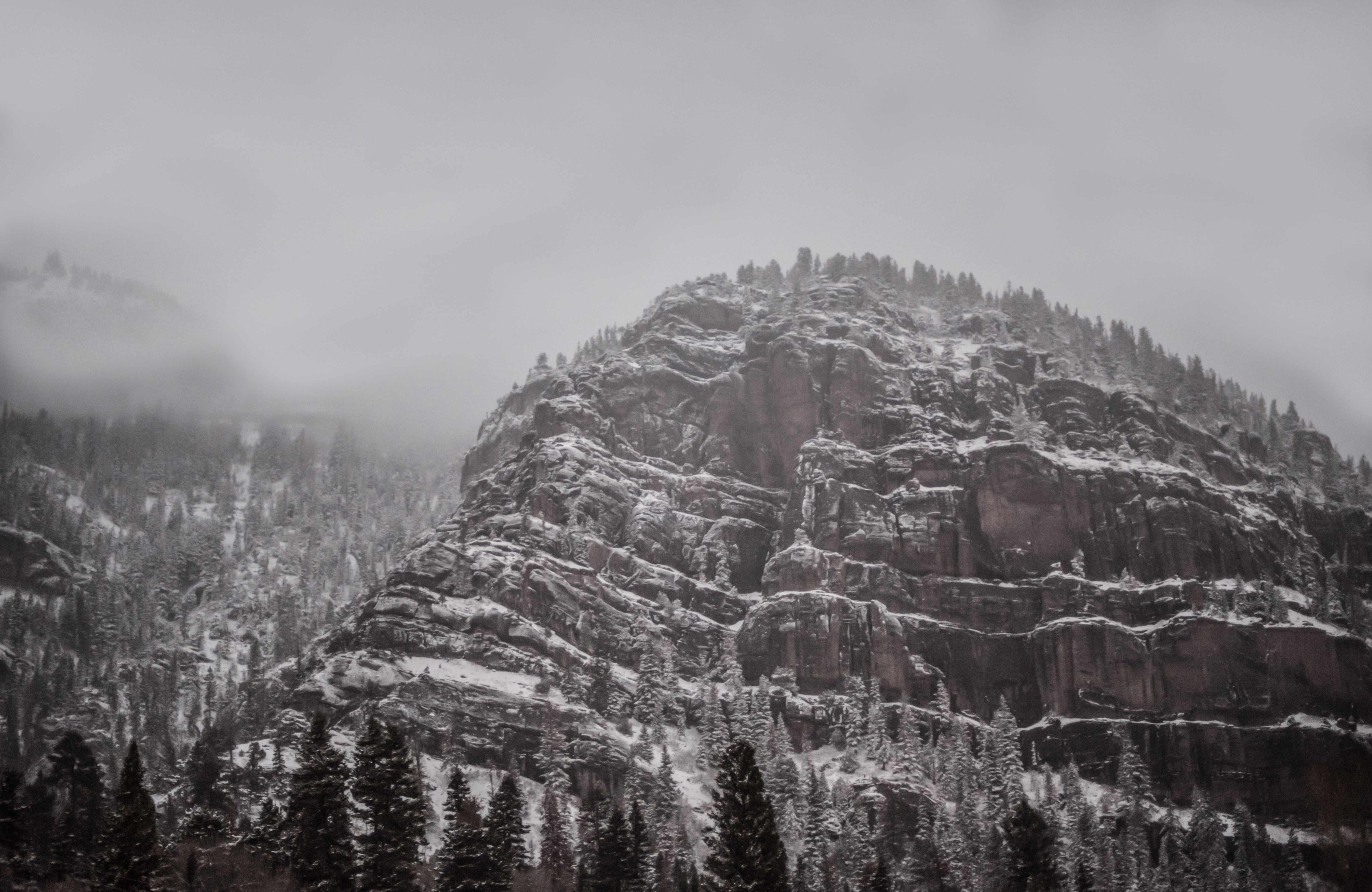 A craggy mountain covered with coniferous woods in Ouray