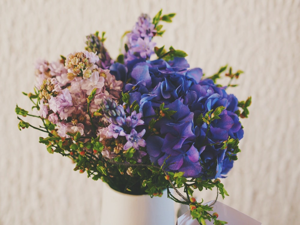 purple and pink petaled flowers in vase