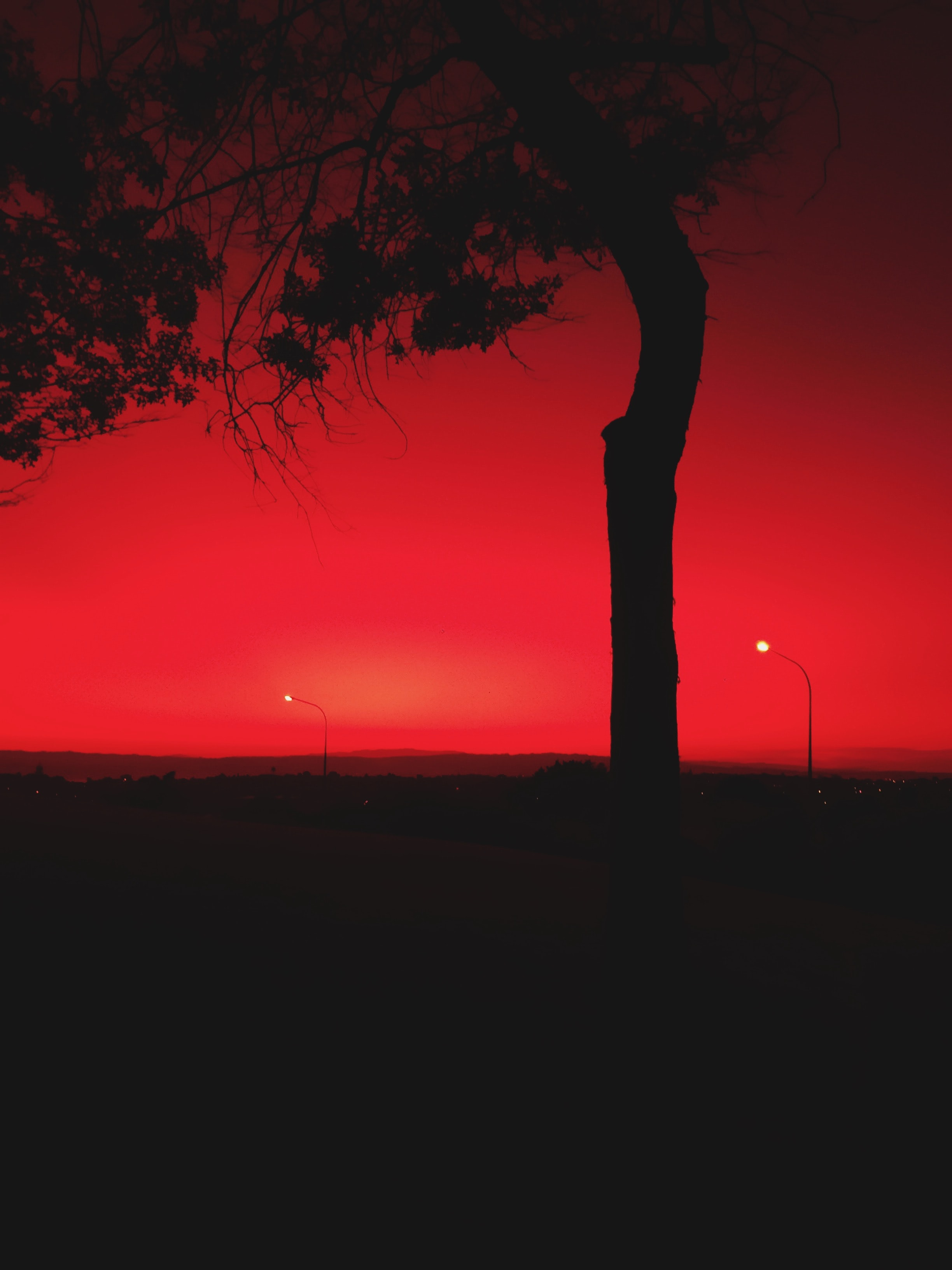 Free Unsplash photo from Those Red Shades