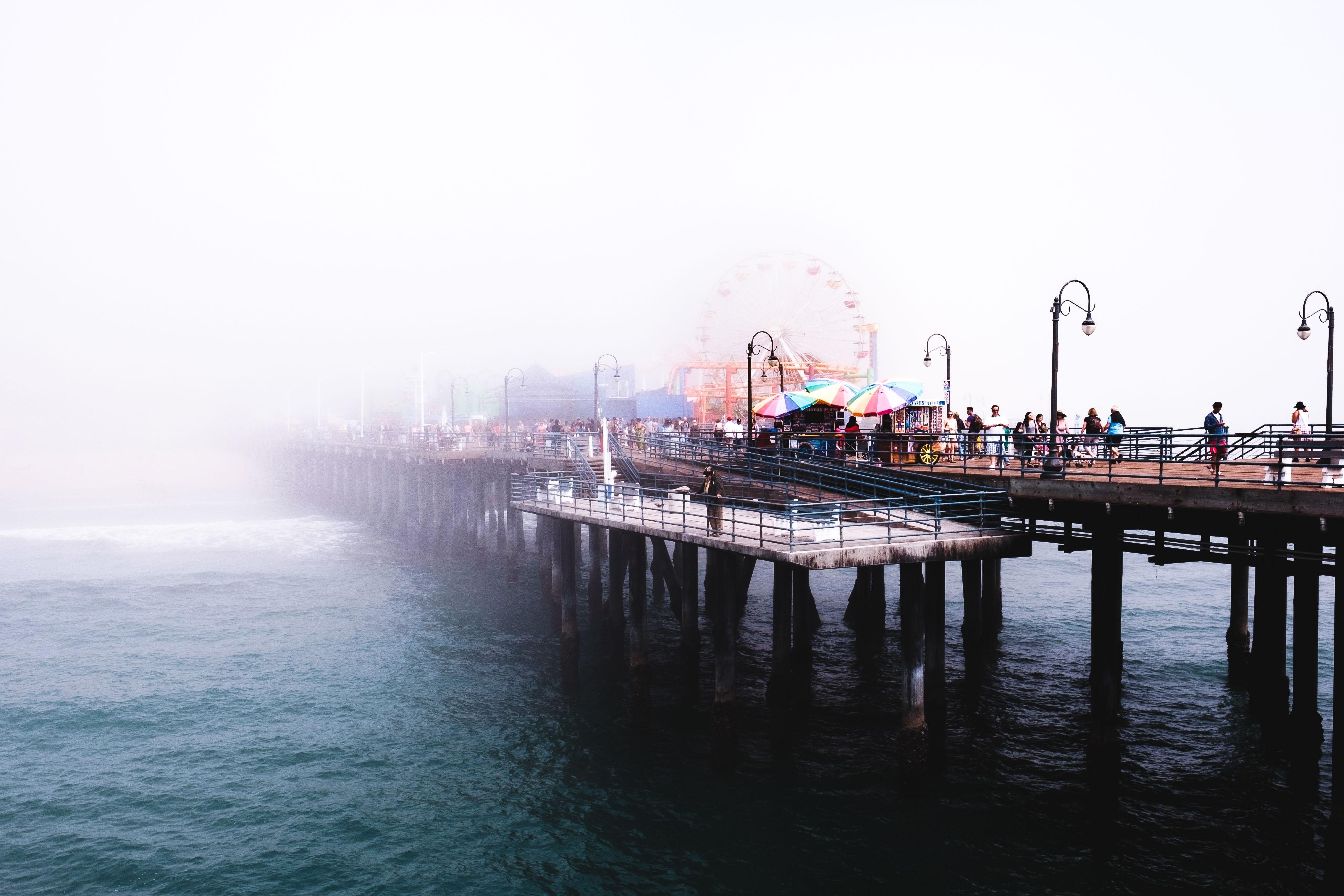 people standing on dock bridge