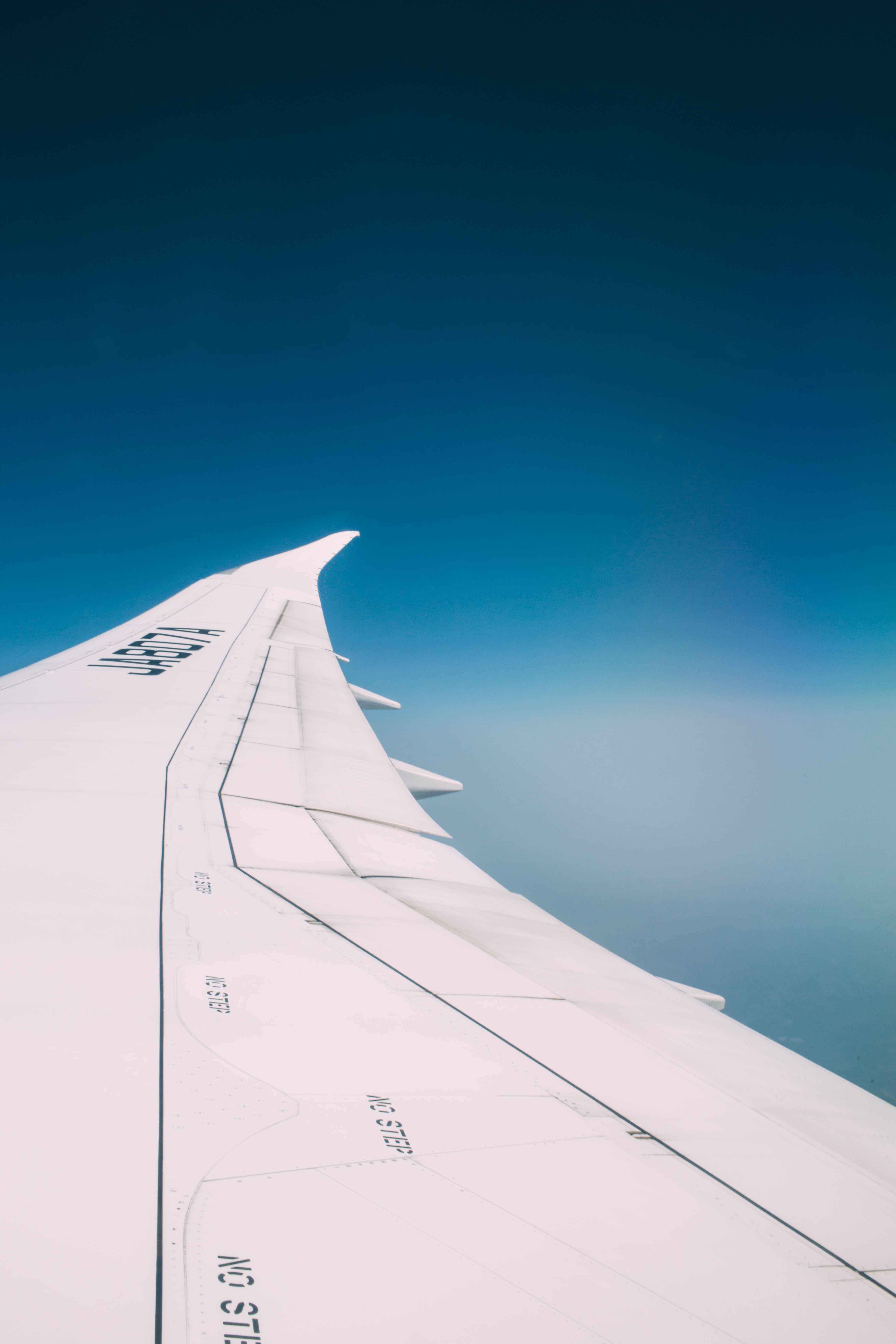 The wing of an airplane while in flight.