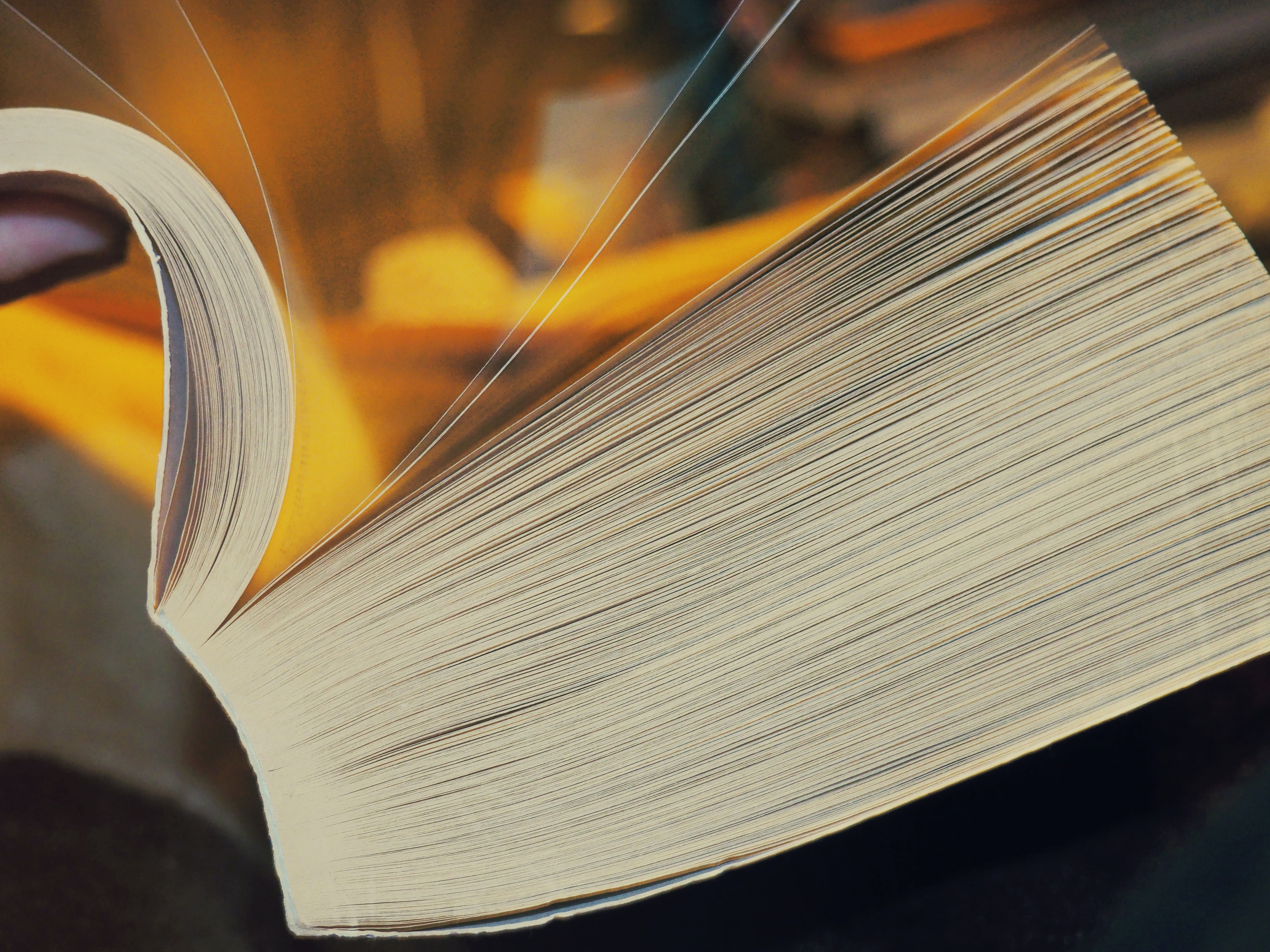 closed-up photo of white open book