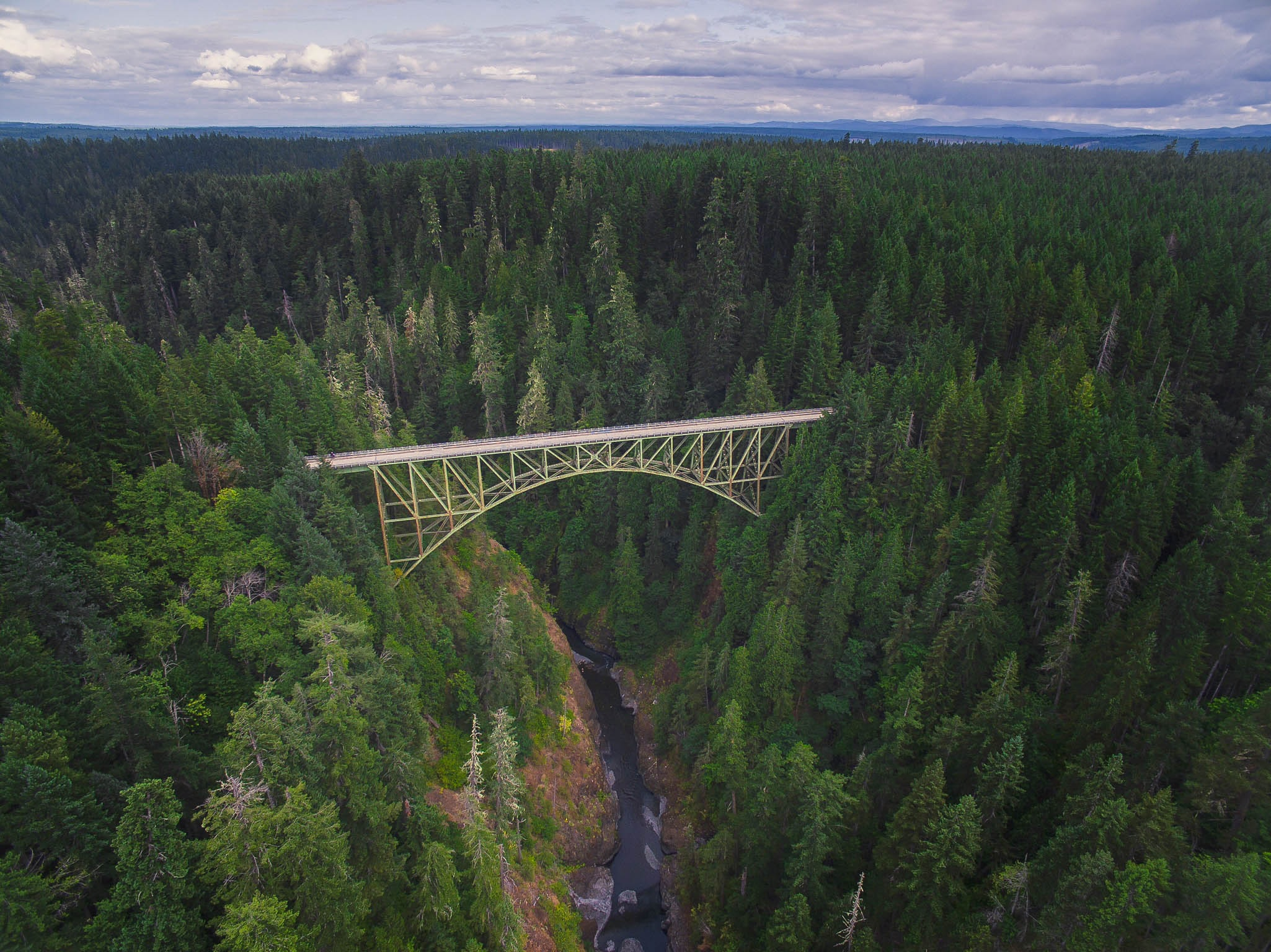 A steel bridge in a forest high above a ravine