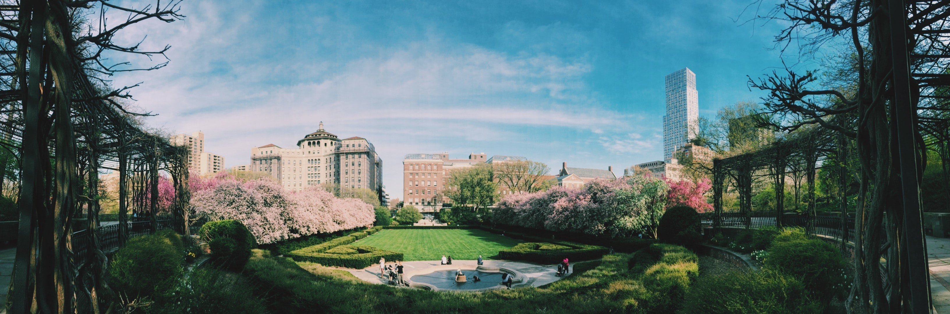 Panorama of the Conservatory Garden with pink bushes in Central Park, New York City