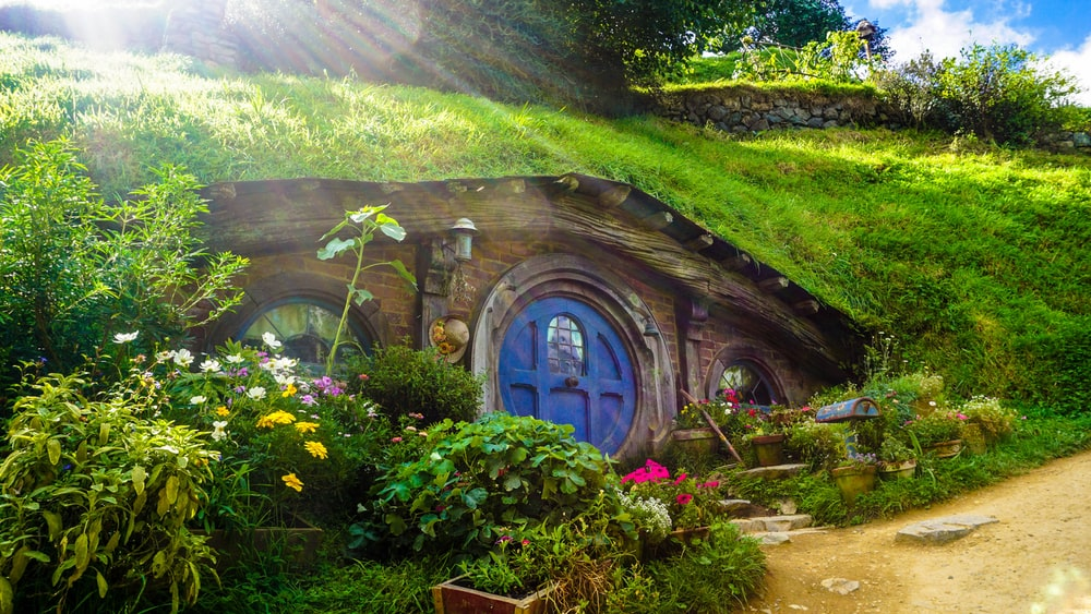 underground house covered with green grass and plants