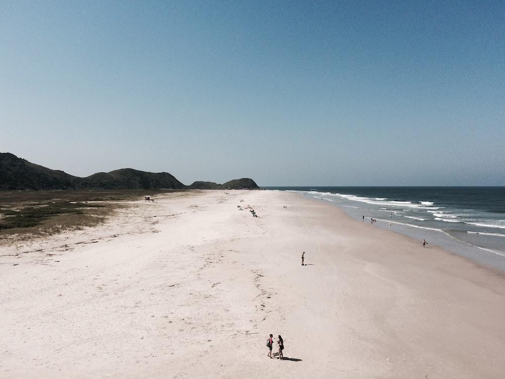 people on seashore at daytime