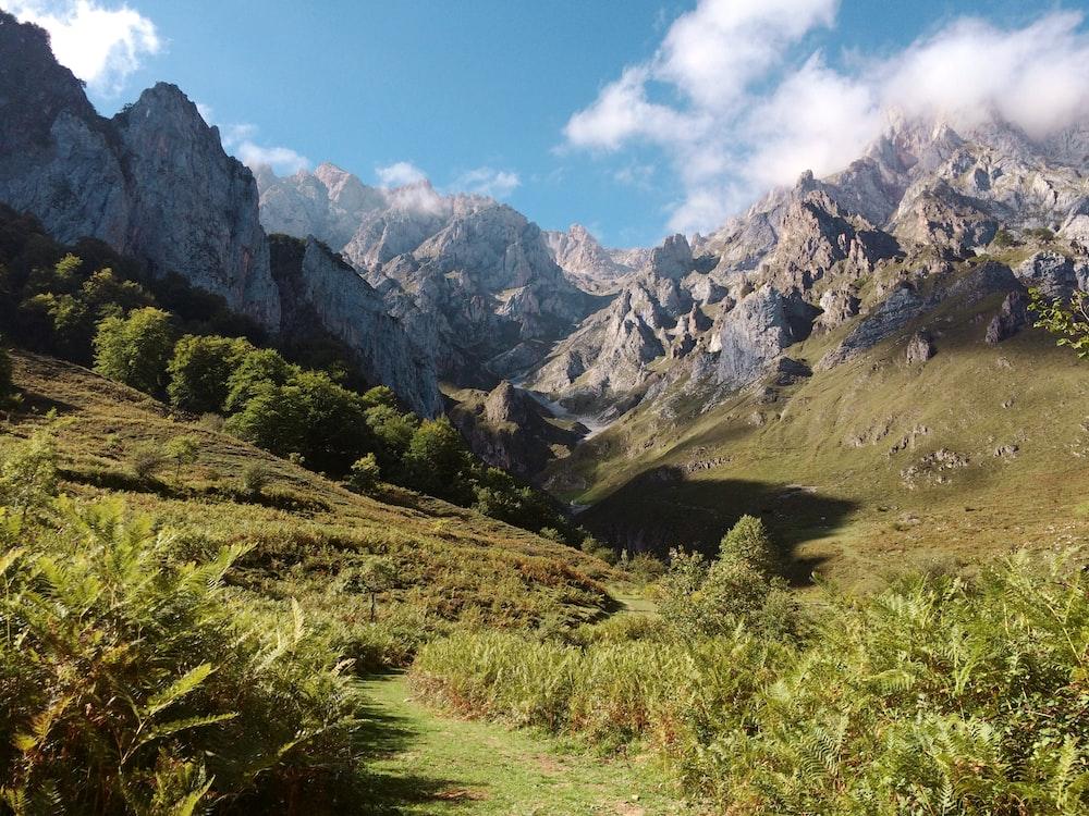 mountain range with green grassy mountainside