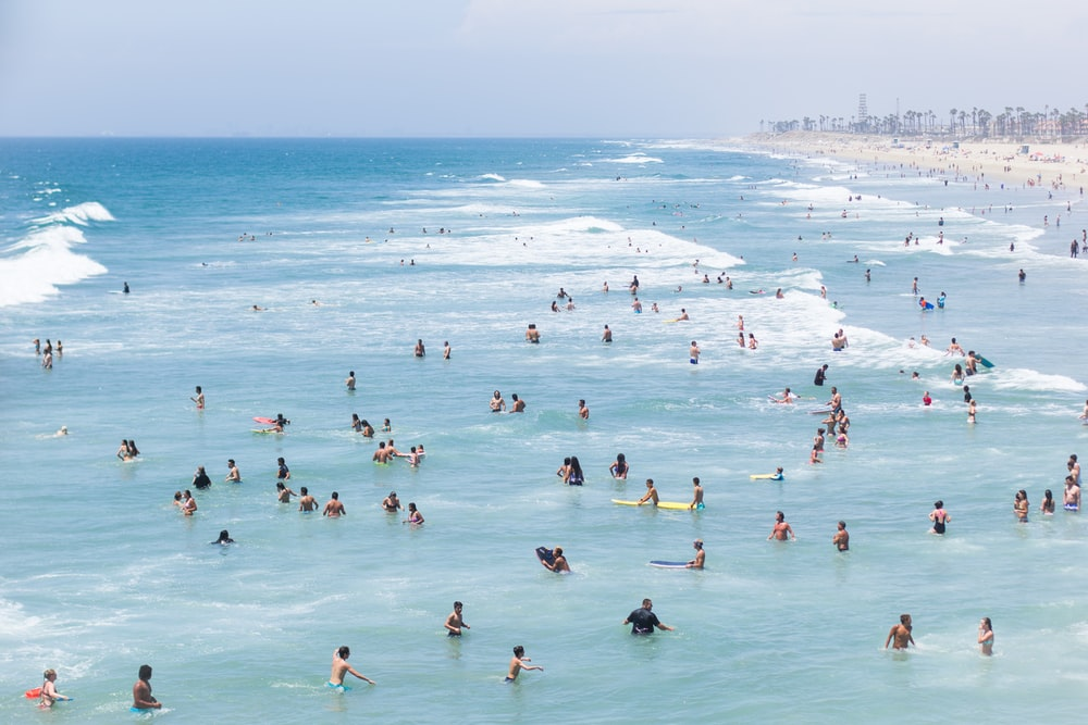 aerial view of group of people swimming on beach