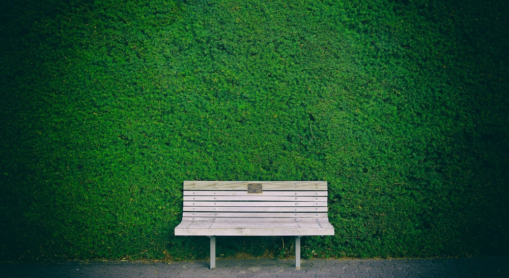 Empty White Wooden Bench Beside Green Wall Photo Free
