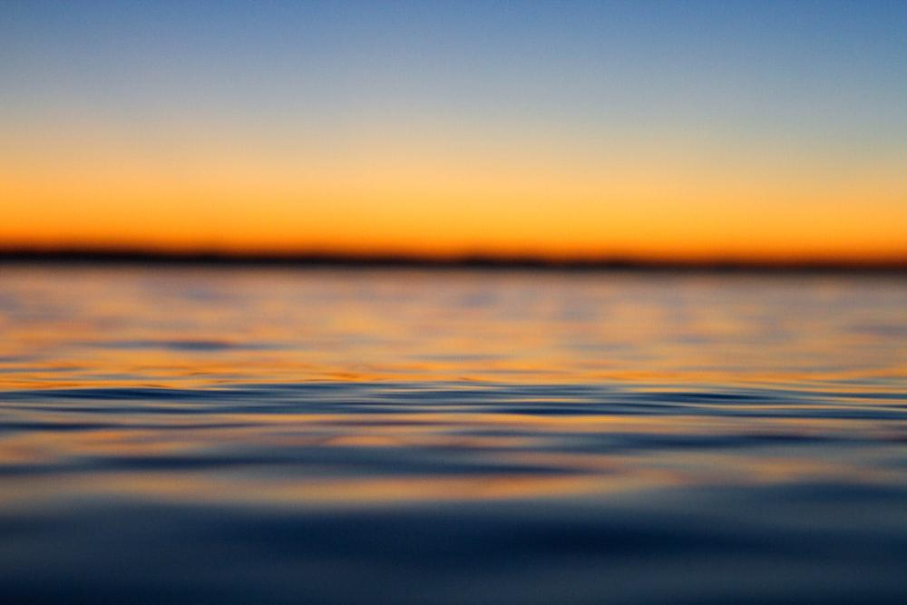 macro shot photo of body of water