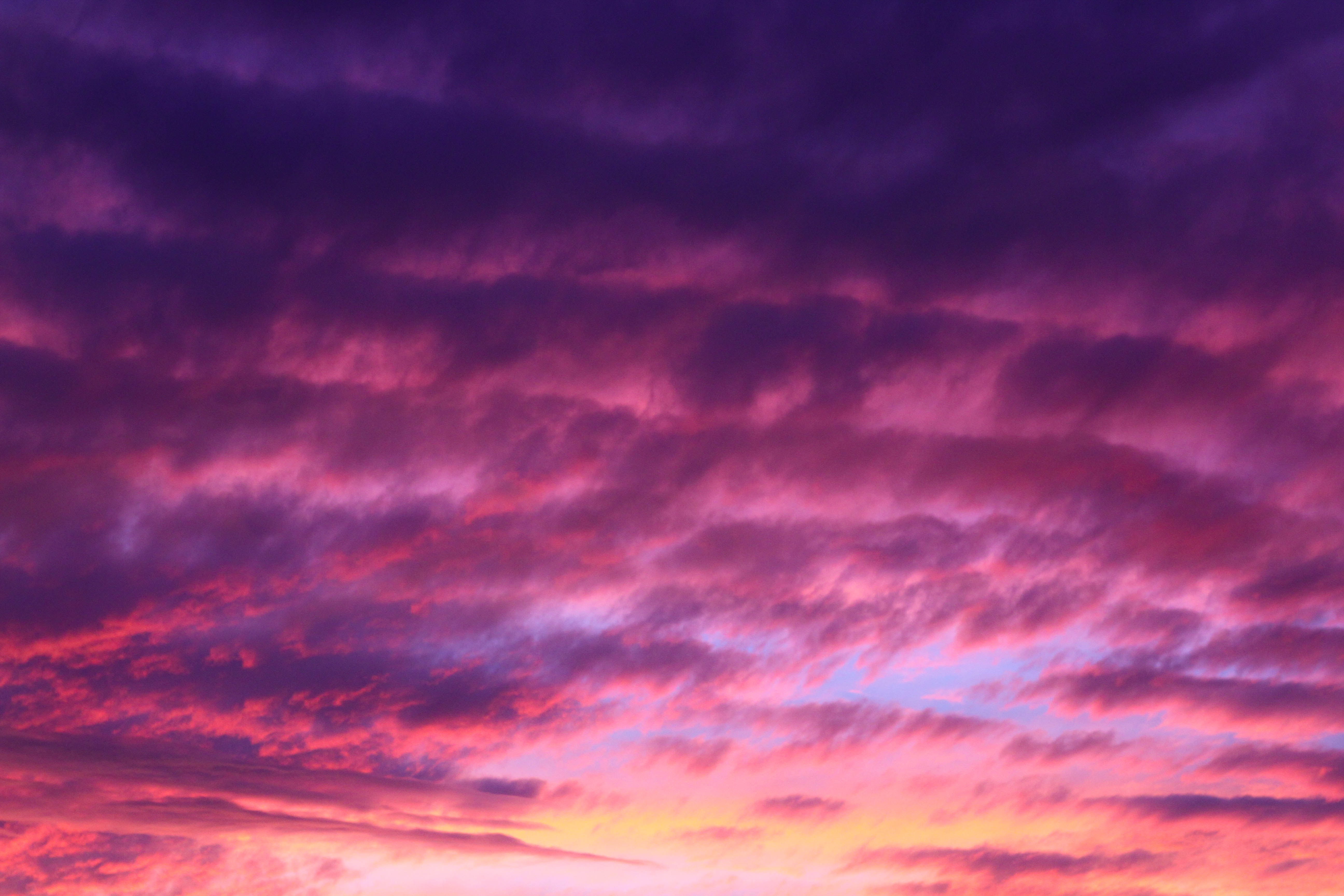 The sunset turns the cloudy sky purple and pink at Bondi Beach