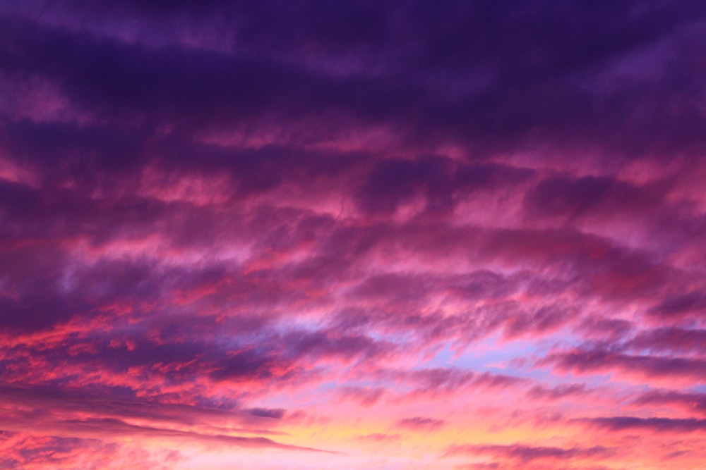 Cotton candy skies 17 best free sunset cloud sunrise and pink the sunset turns the cloudy sky purple and pink at bondi beach junglespirit Choice Image