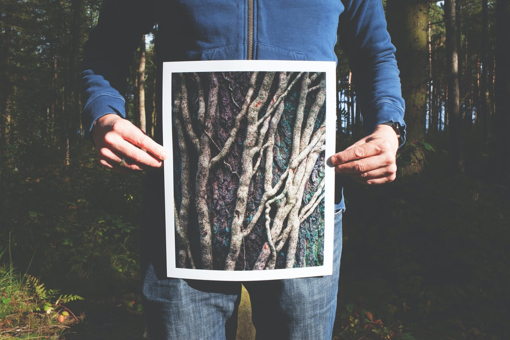 person holding photo of roots