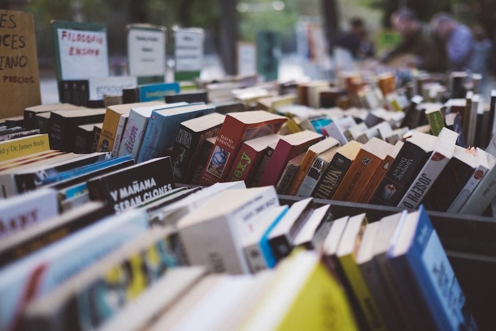 assorted-title novel book lot