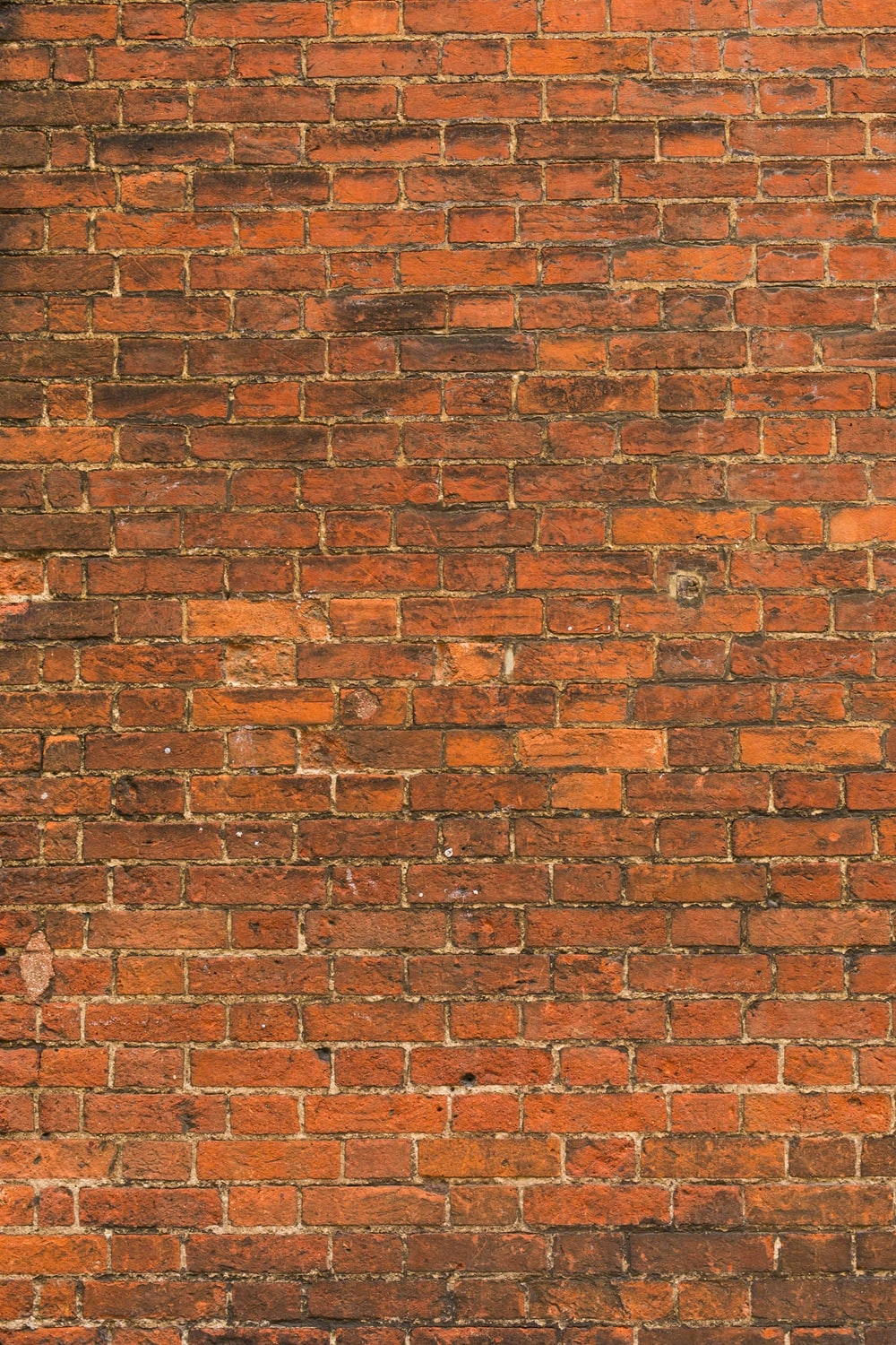 A Red Brick Wall In Oxford