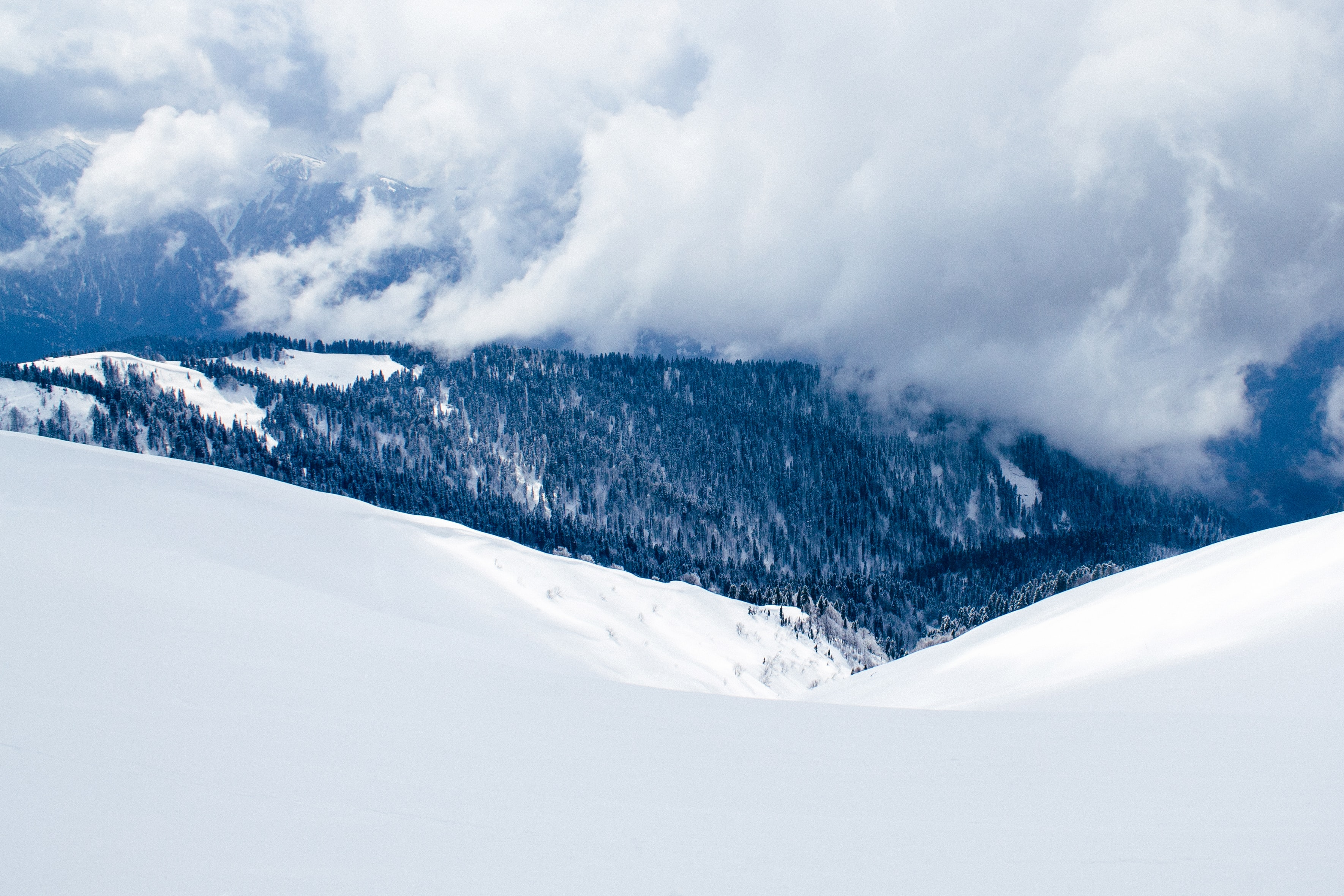 A blanket of snow changes to a forest covered mountain with thick white clouds