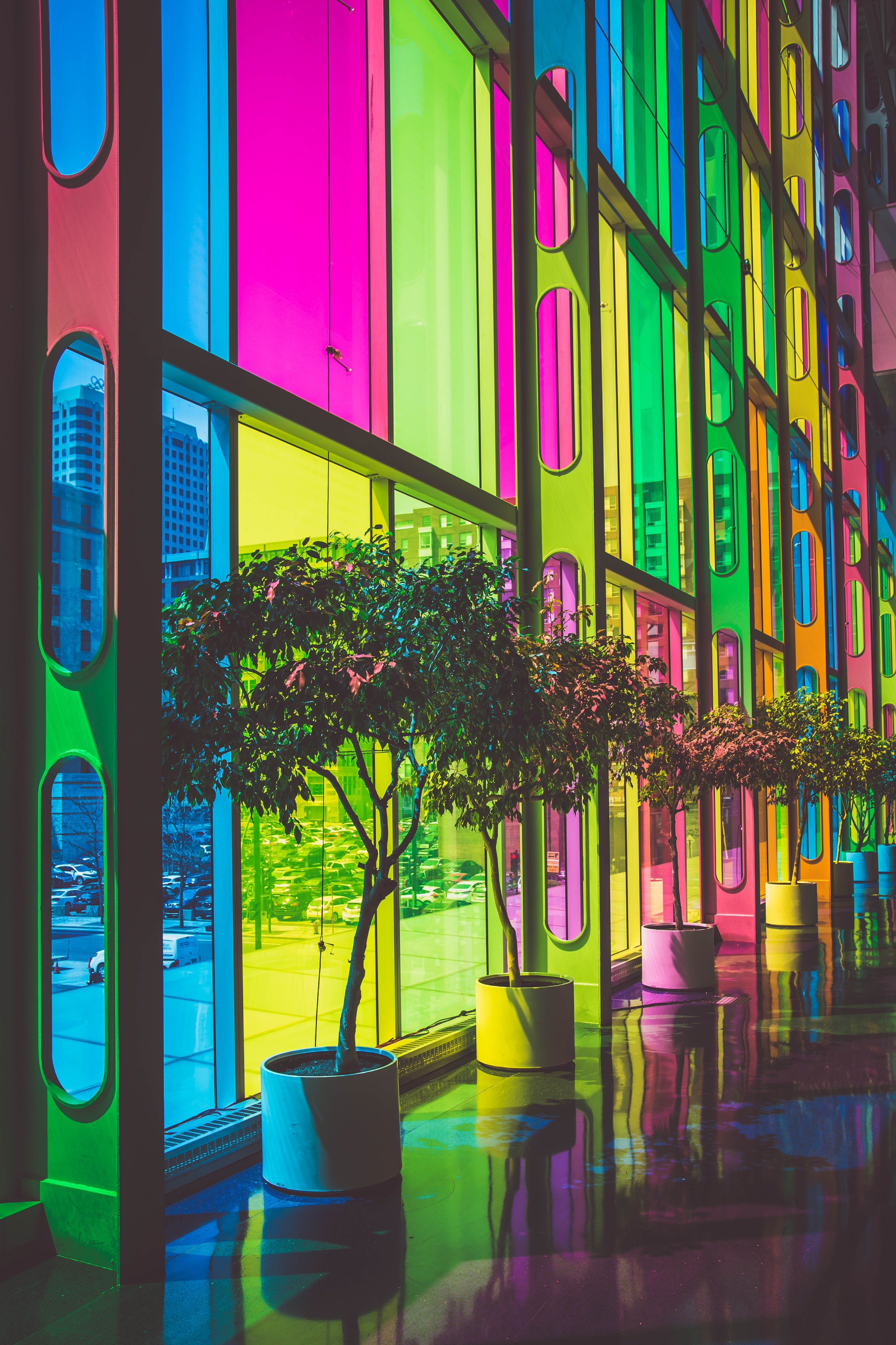 Multicolored rainbow glass windows with potted trees in front in urban street