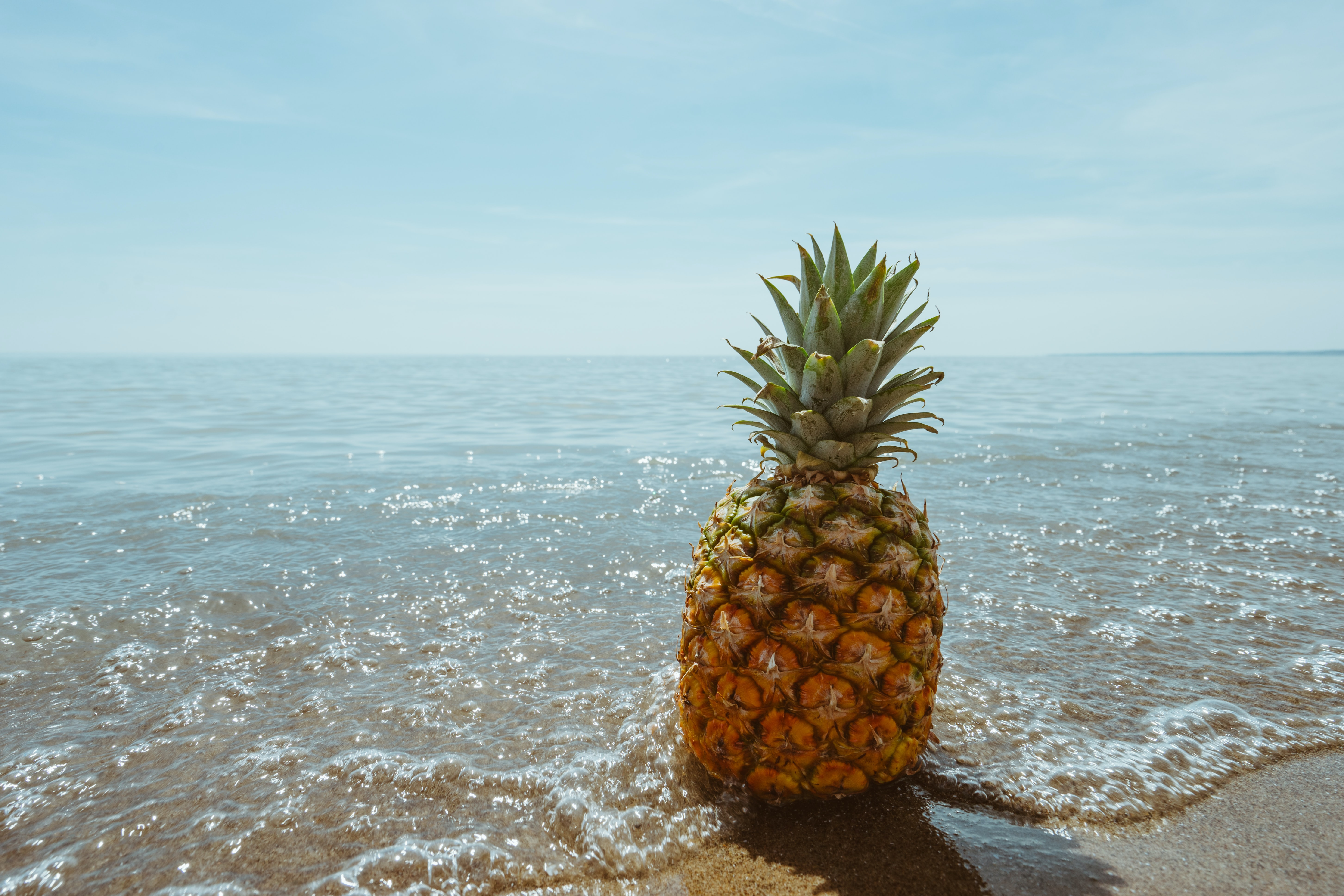 Pineapple on the sandy shore being washed by the ocean