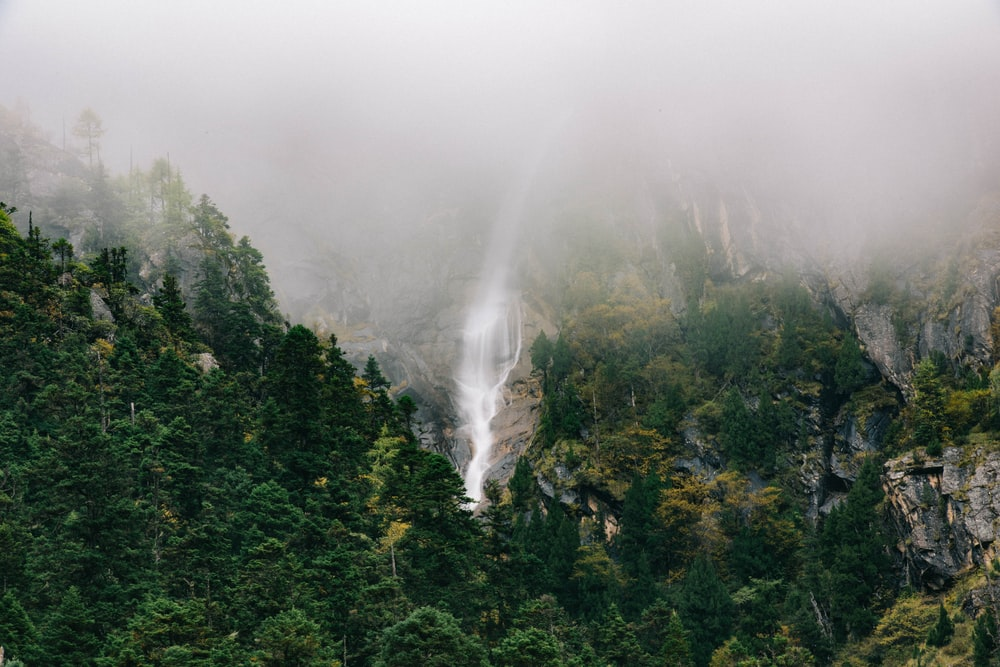 landscape photo of waterfalls surrounded by trees covered with fog