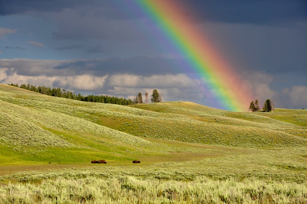 rainbow near green grass ranges
