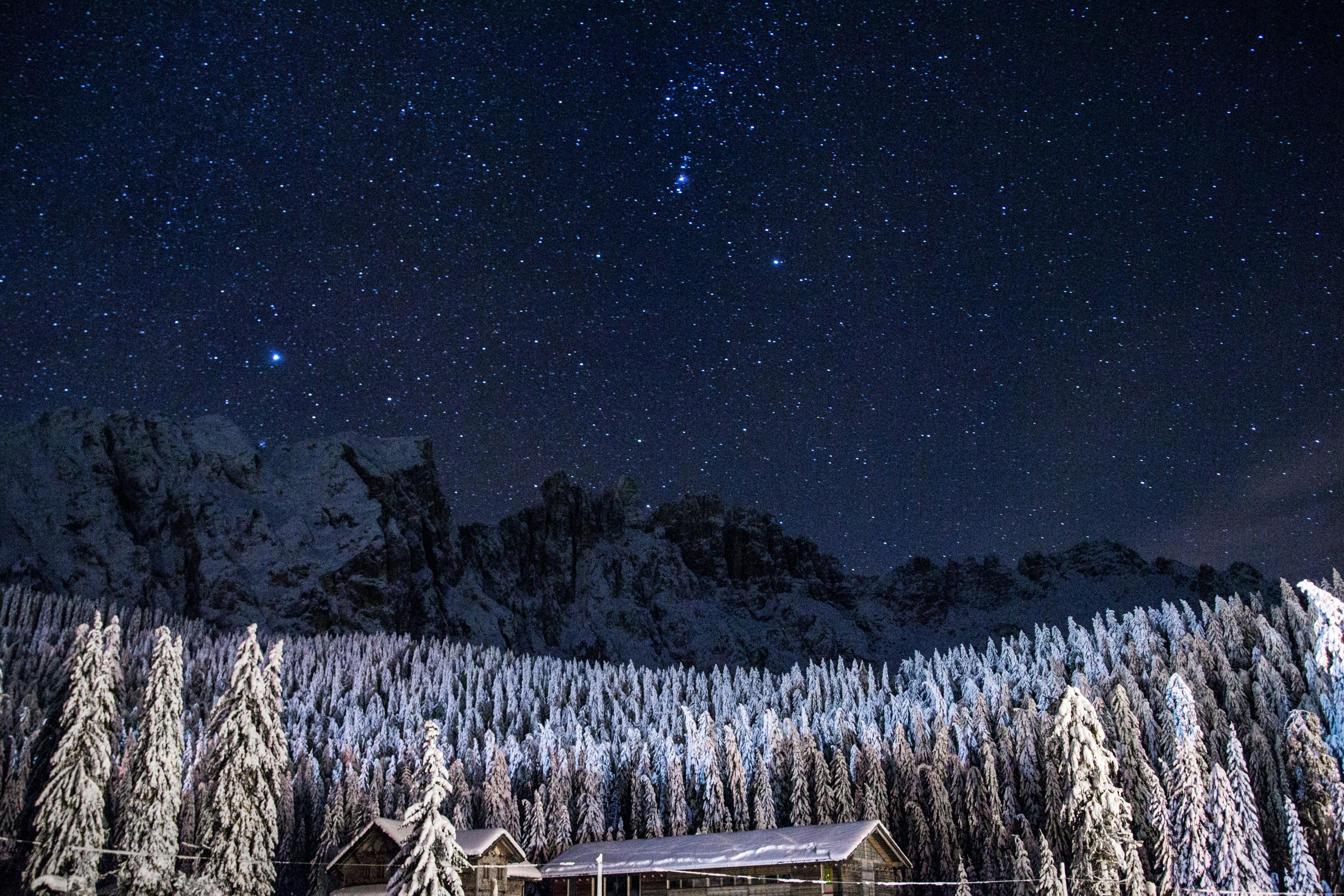 Starry night sky over a snowy forest at the foot of a mountain ridge