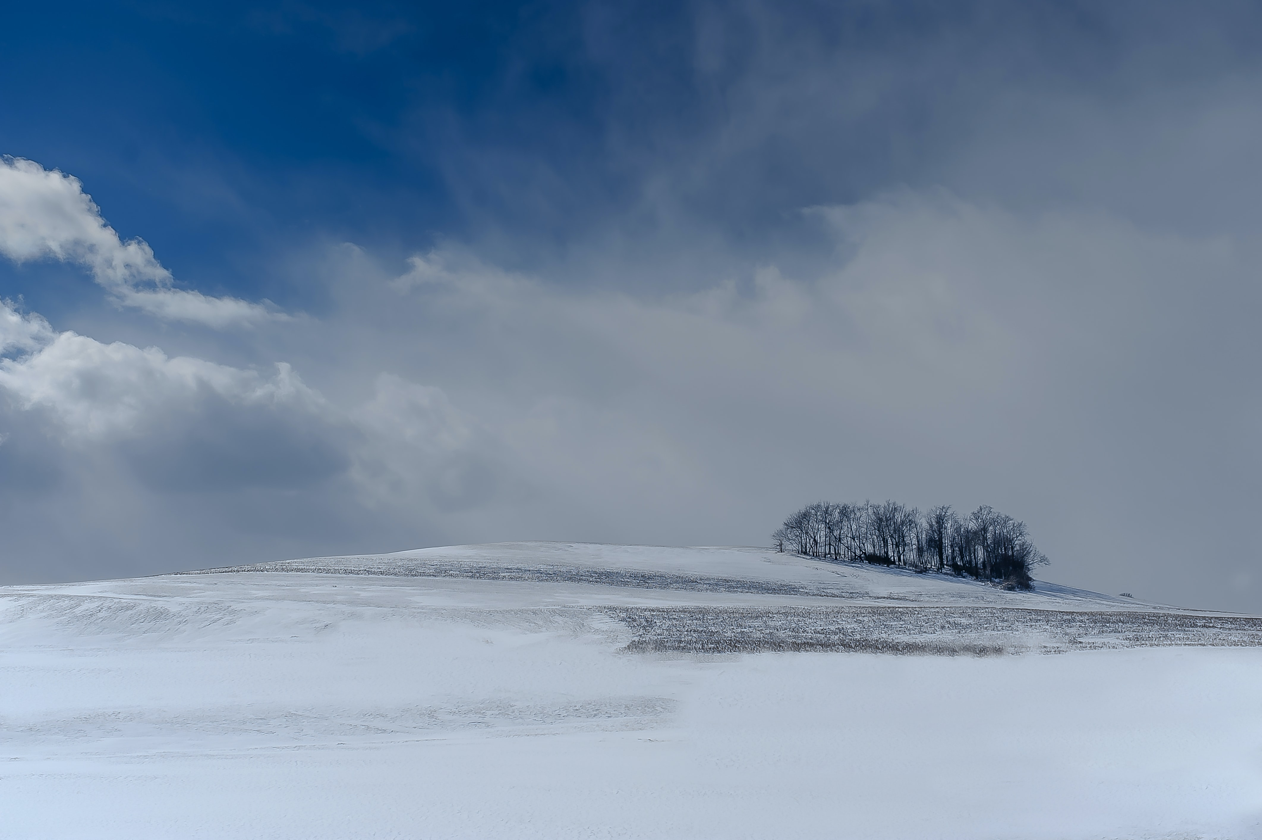 Fluffy clouds swept across sky, hovering over open snowy land and group of trees