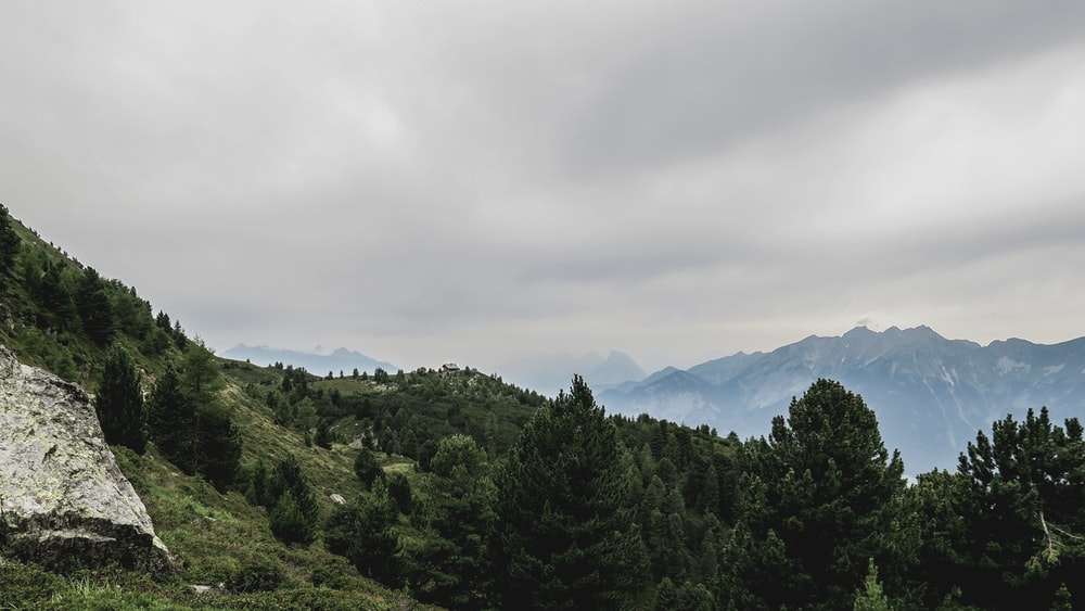 green trees on mountain under cloudy sky during daytime