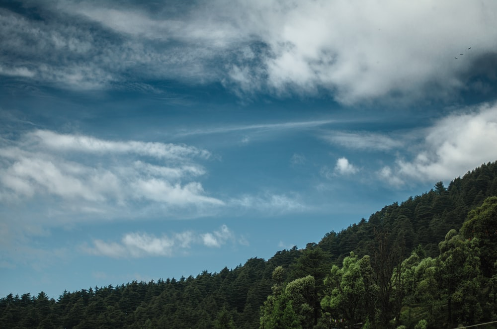Patchy clouds over a wooded slope in Dharamkot