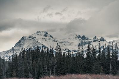 mountain alp under cloudy sky banff teams background