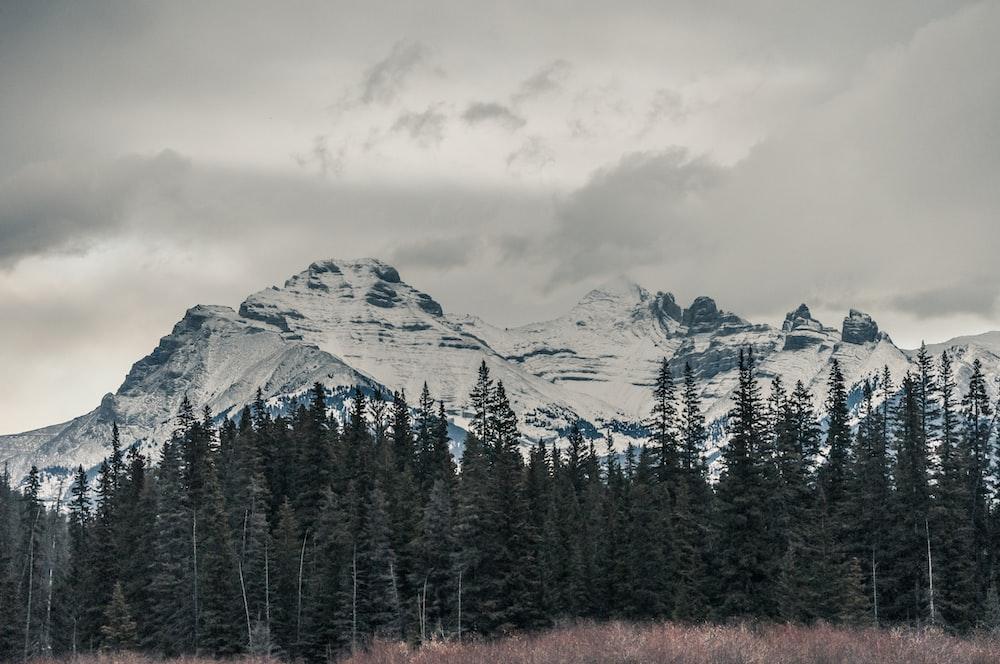 mountain alp under cloudy sky