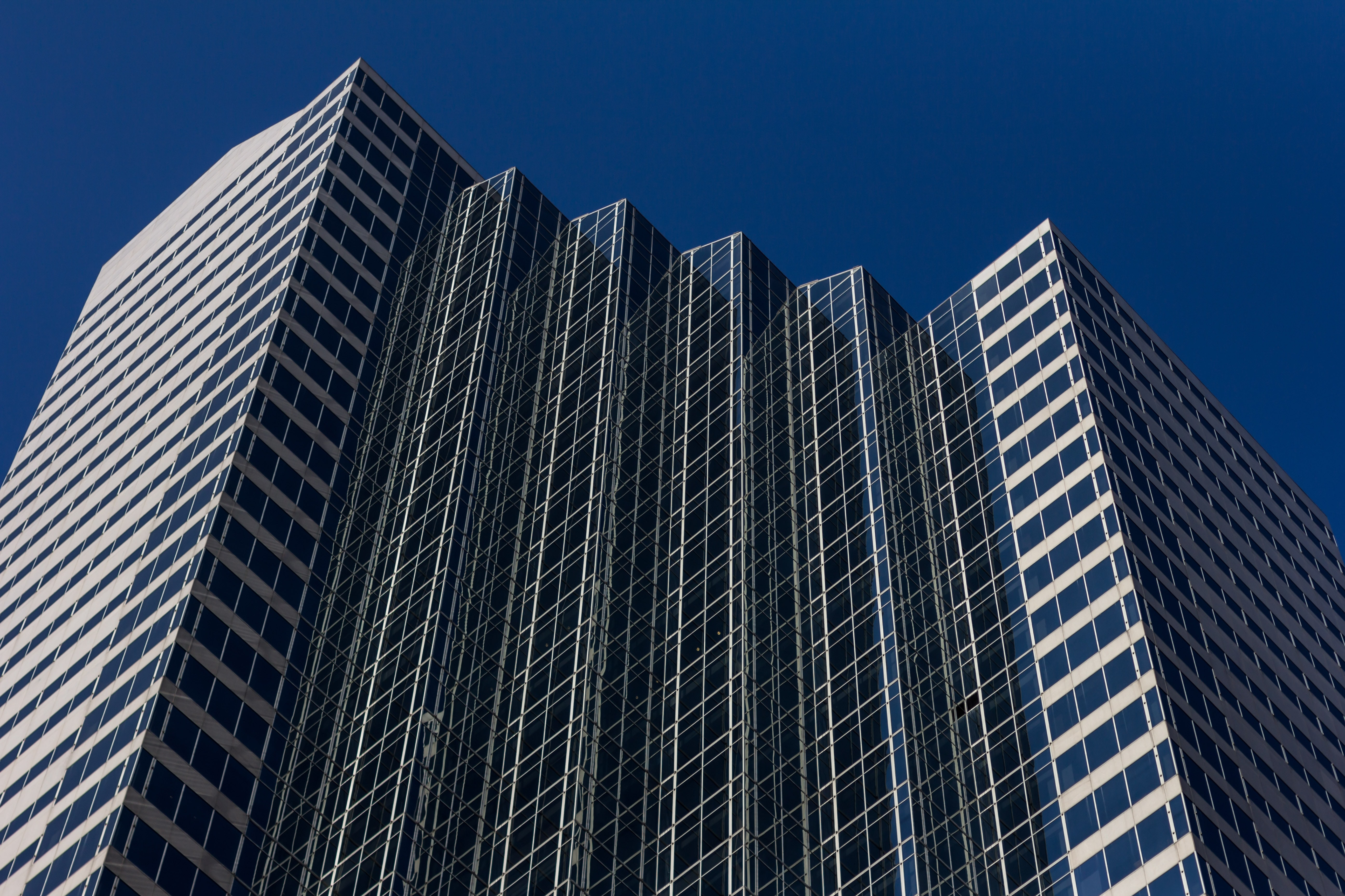 low angle photo of curtain wall building at daytime