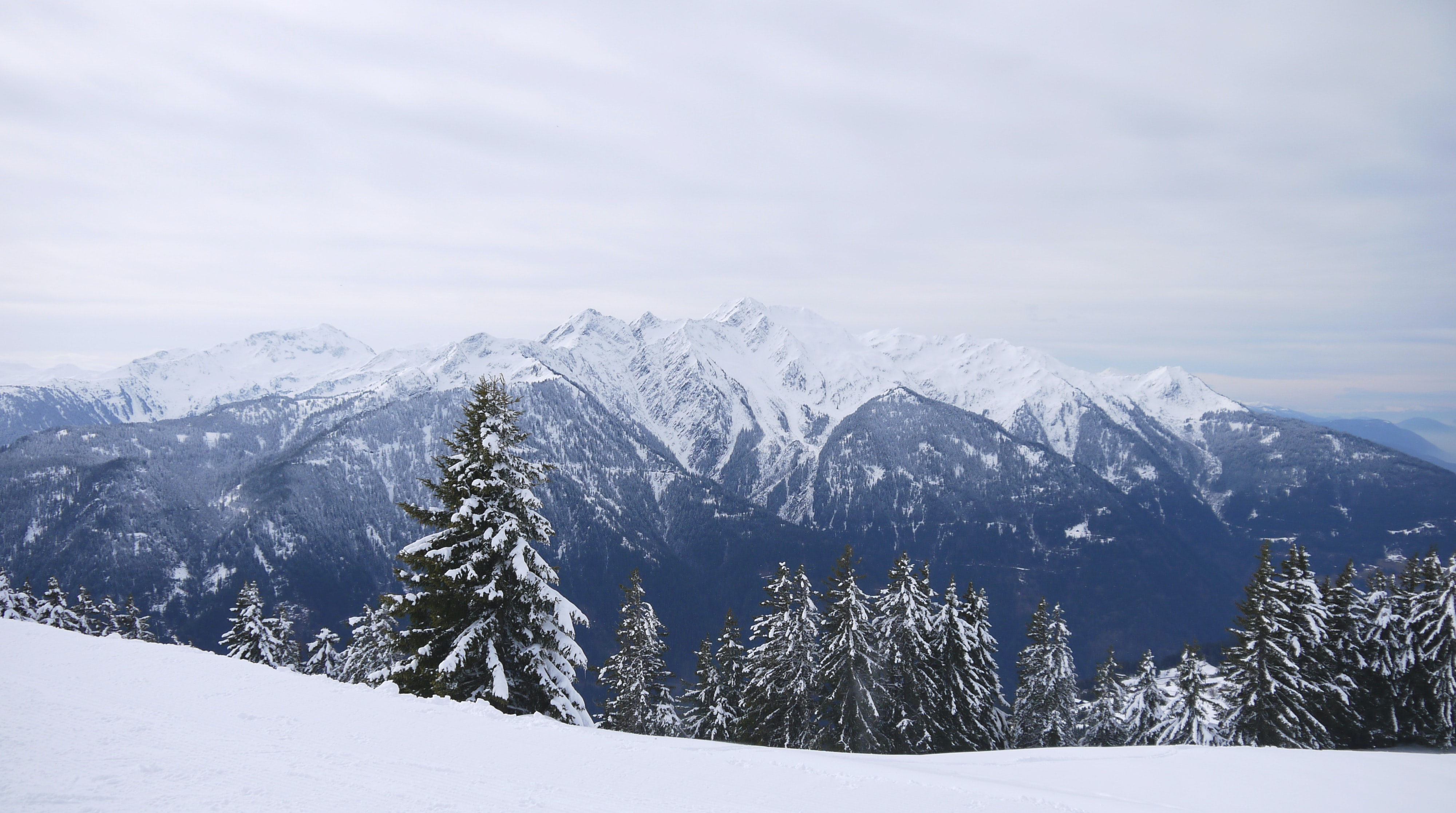 snowy forest and mountains under cloudy sky during daytime