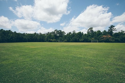 Field with soccer goals near the forest
