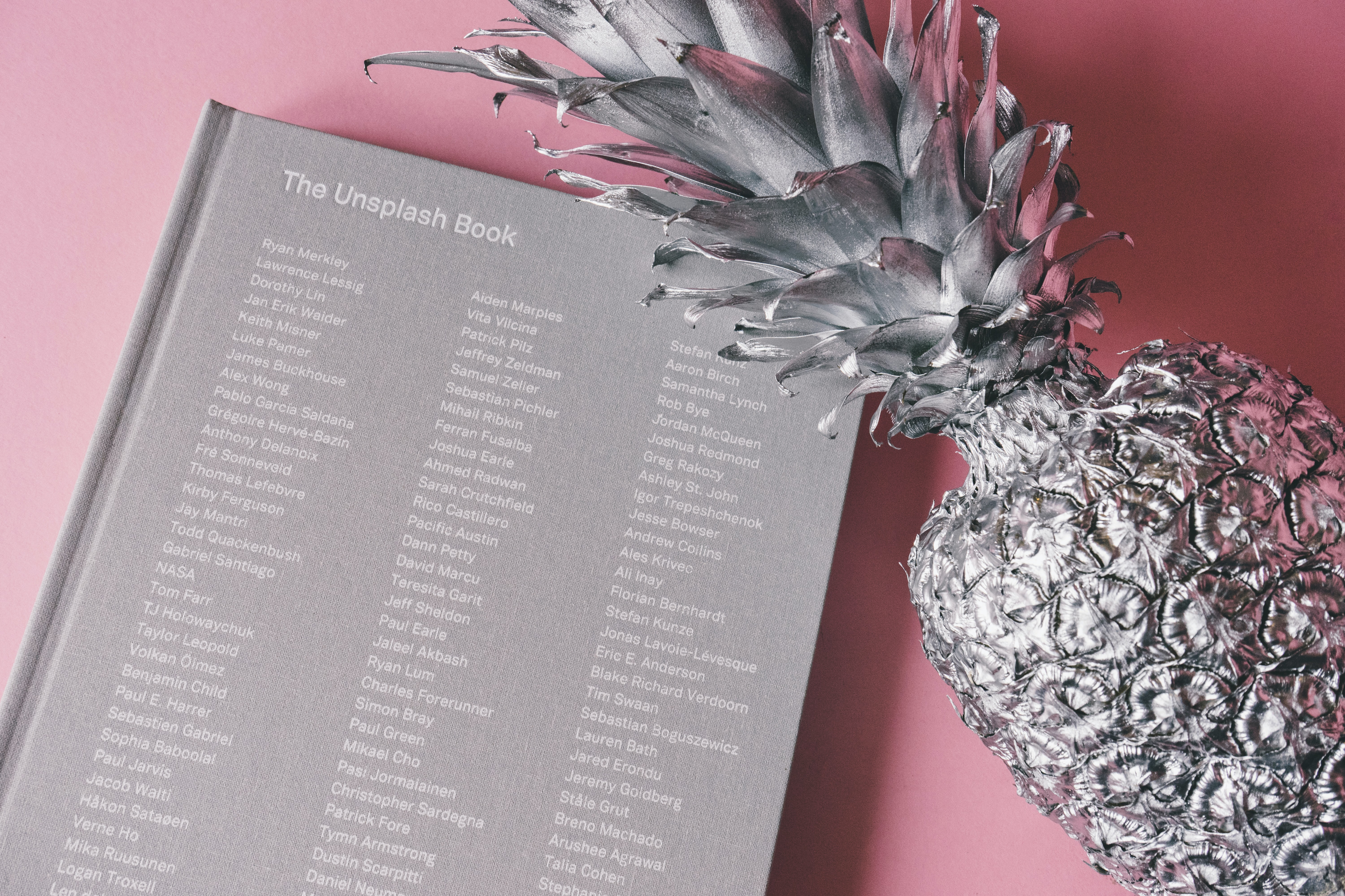 A gray painted pineapple next to a gray hardback book.