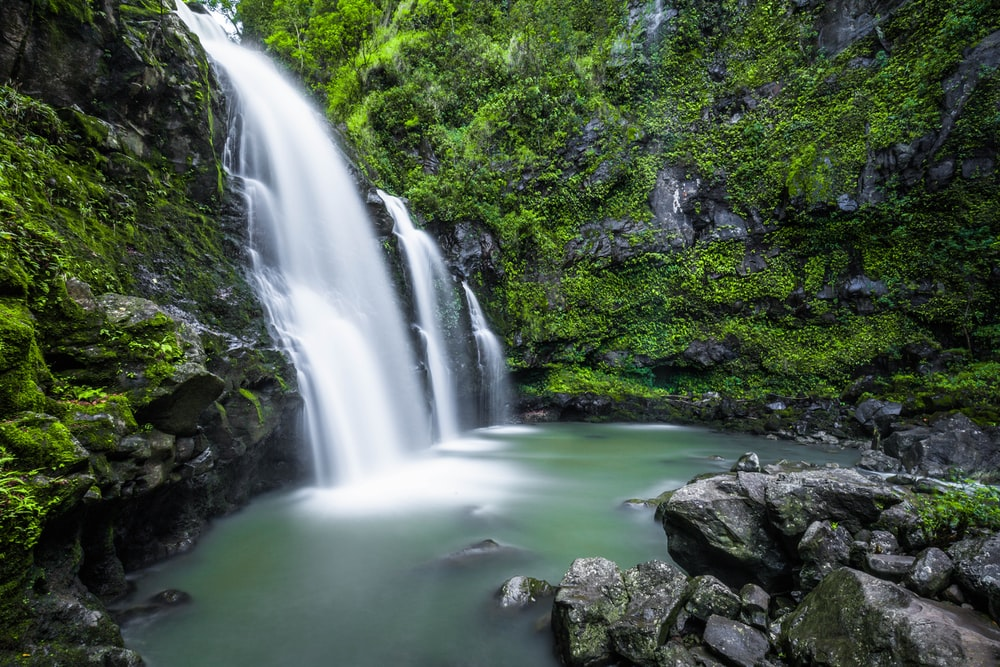 shallow focus photography of water falls