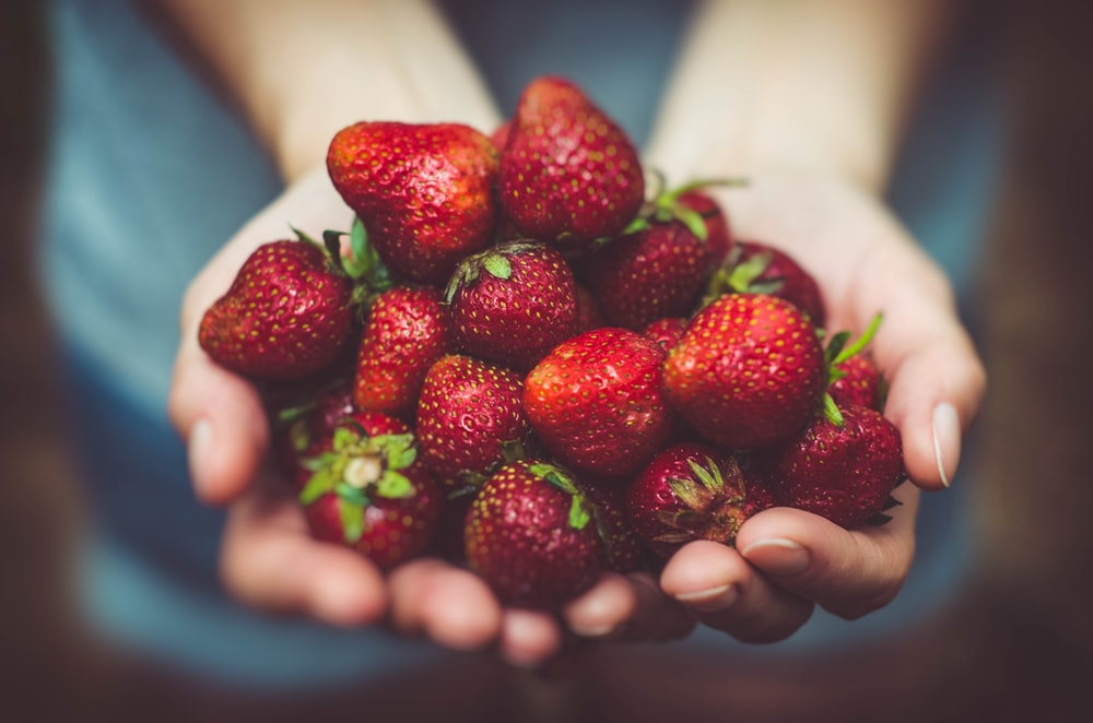 shallow focus photography of strawberries on person's palm