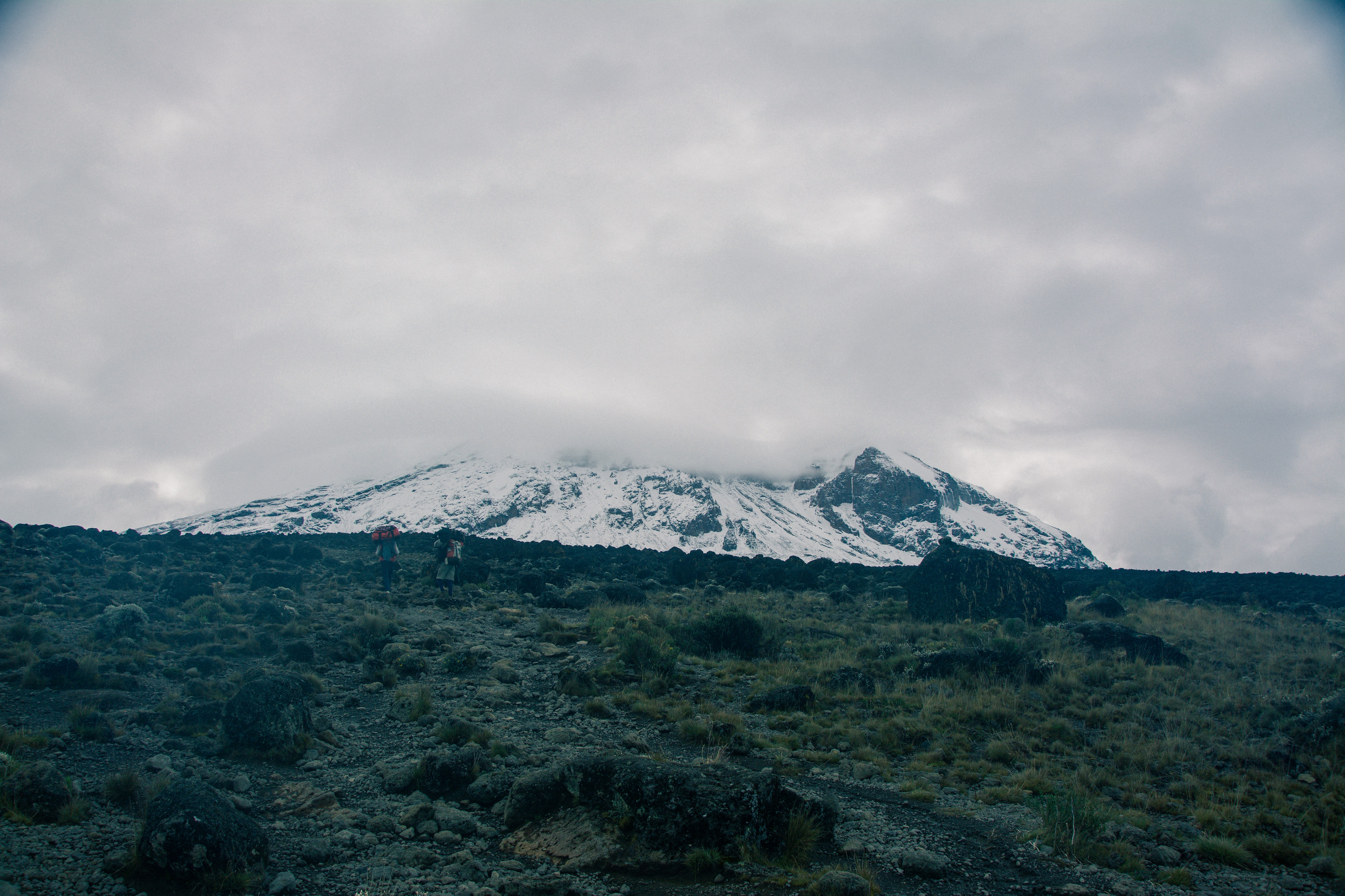 Overcast clouds cover icy mountains in green forest