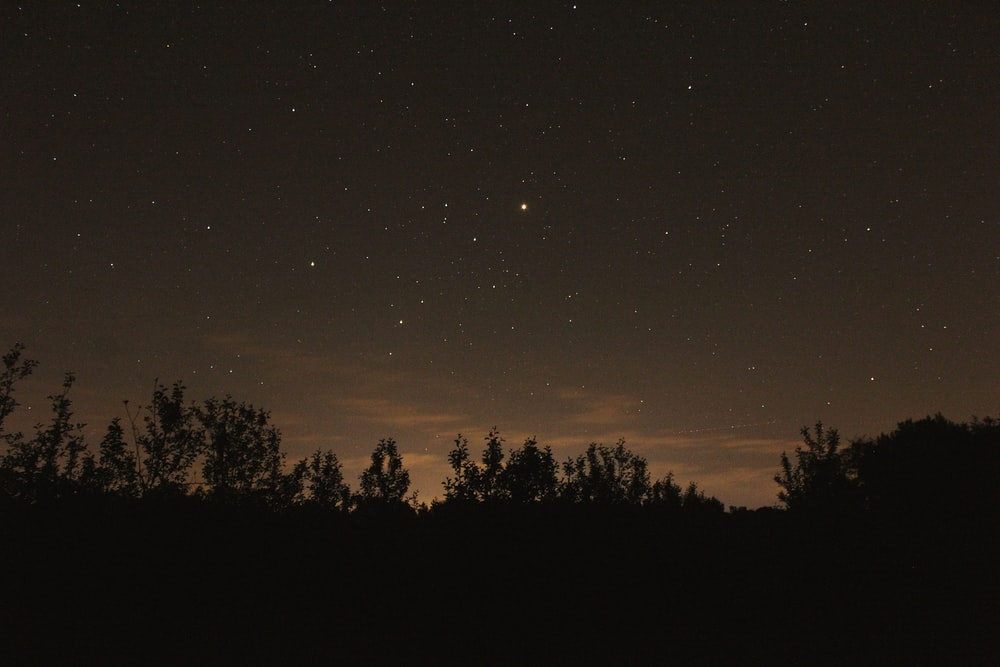 clear sky with stars