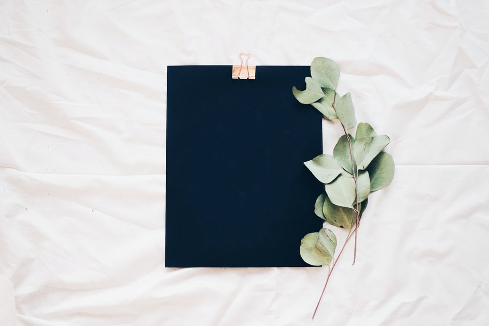 Small branches of leaves next to a black clipboard on a white sheet.