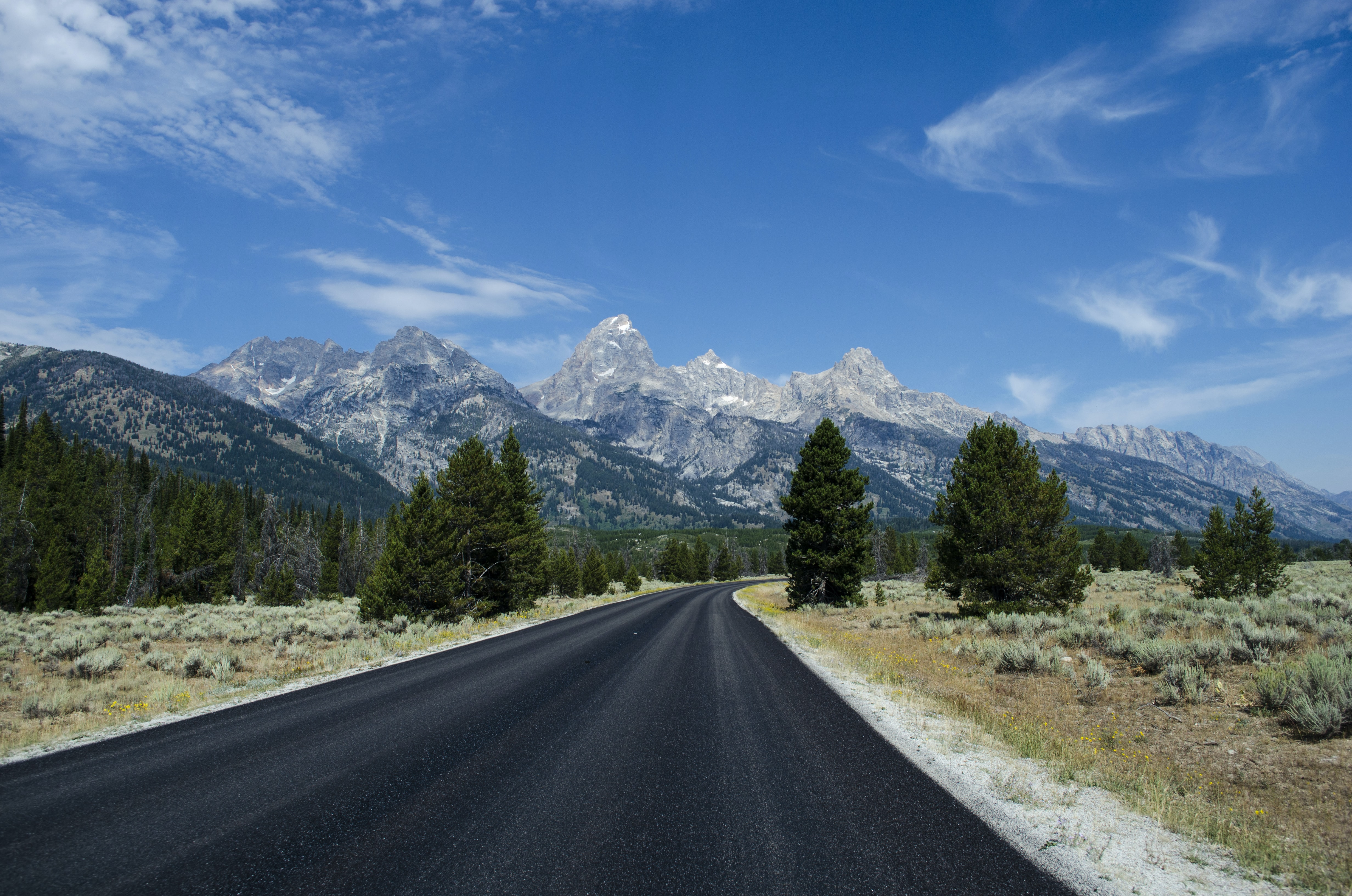 A winding road with green pine trees and a mountain range in the distance at Grand Teton