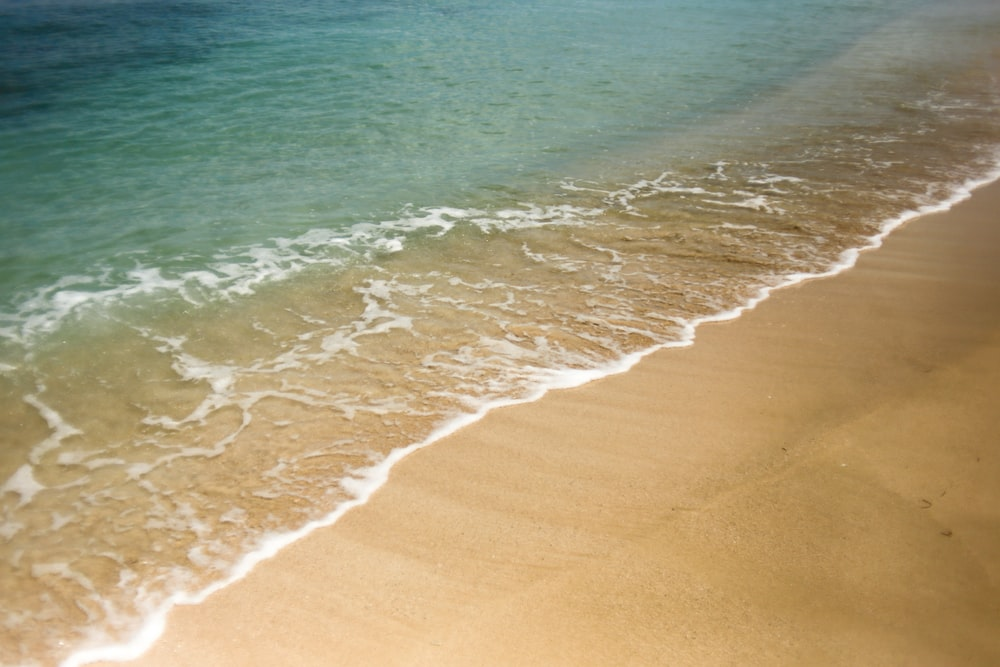 sea and shore nature photography