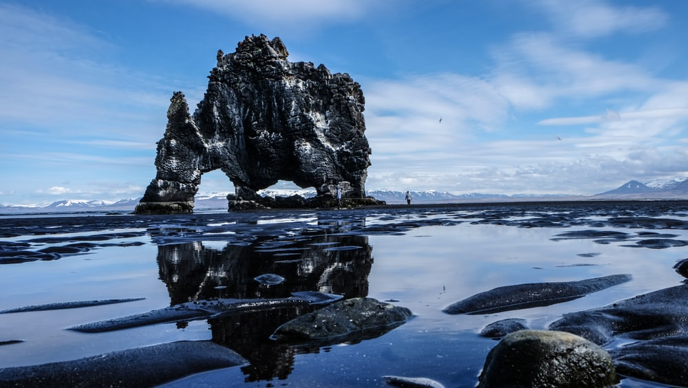 elephant island on body of water