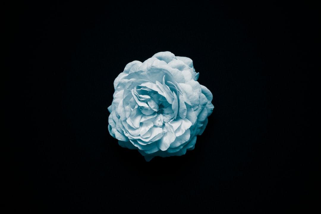 unsplash blue