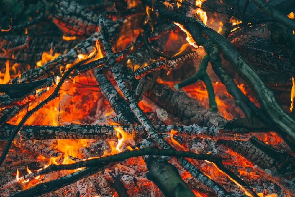 firewoods on fire