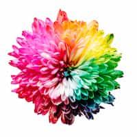 Color Psychology 🎨 color stories