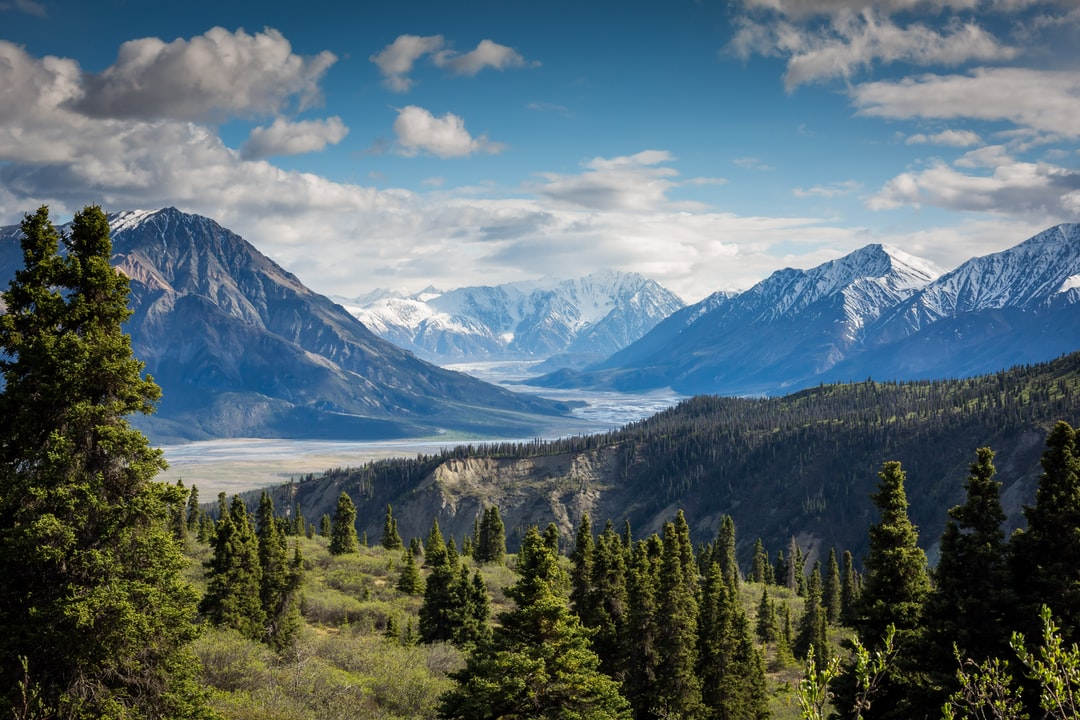 Water in a shallow mountain valley in Kluane National Park