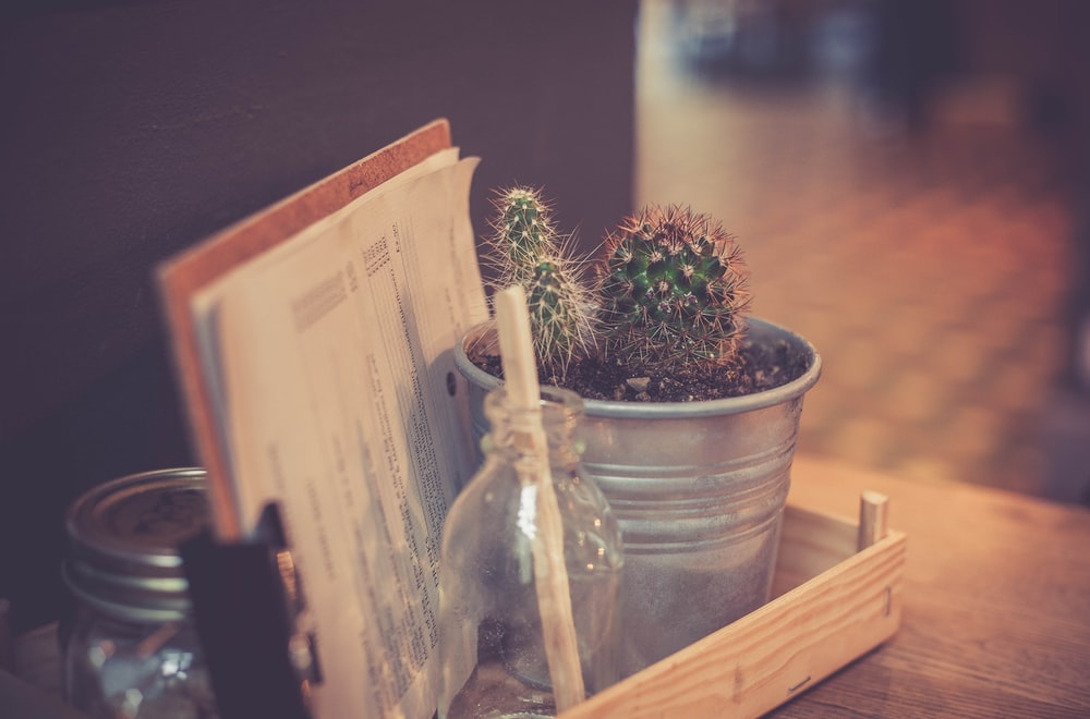 cactus plant on gray metal pot beside white printing paper on brown desk